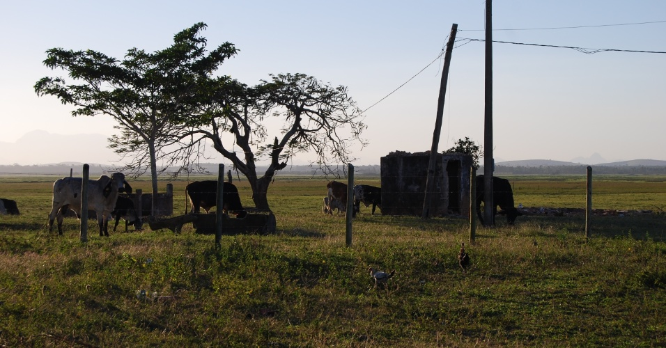 A paisagem rural é recorrente em toda a cidade. Vacas são vistas pastando em terras ao longo da estrada e nas regiões rurais
