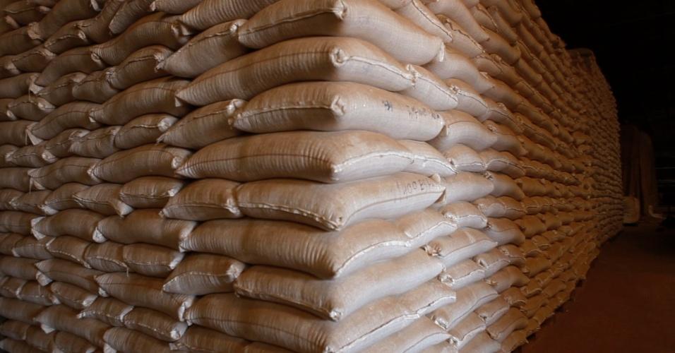 Sacas de grãos em uma empresa em Sorriso (MT)