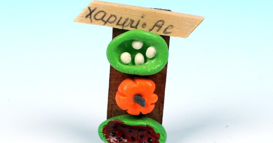 """14.out.2012 - O souvenir de Xapuri, no Acre, mostra alimentos em uma mesa, e a política por lá confronta pecuaristas e seringueiros, como o """"UOL pelo Brasil"""" constatou"""